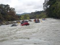 rafting-29-oct-2016_30690282935_o
