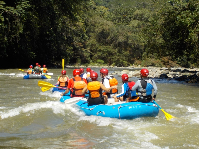rafting-29-oct-2016_30690527145_o